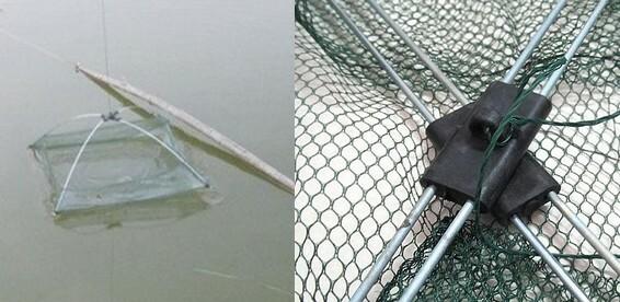 Озера в спб для рыбалки