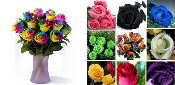 Пусть цветут все цветы